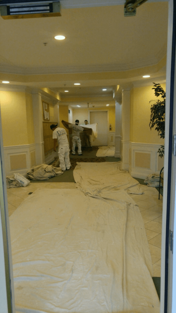 university painters commercial and residential painters