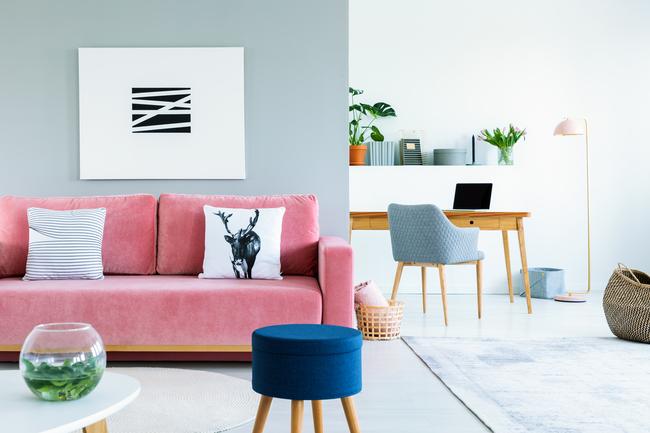 interior painting,University Painters